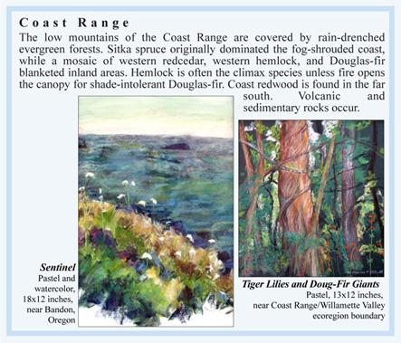 [Oregon Coast Range ecosystem information and art by M. Frances Stilwell]