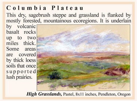 Columbia Plateau Oregon ecoregion art exhibition at Benton County Historical Society & Museum, Philomath, OR, USA