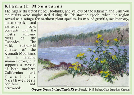 Klamath Mountains ecoregion artwork by M. Frances Stilwell