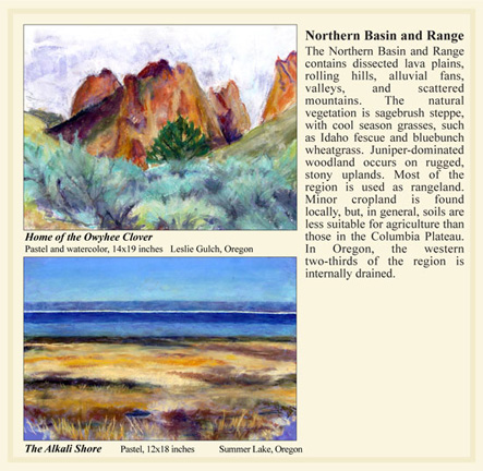 Oregon Northern Basin and Range ecoregion paintings by Corvallis artist M. Frances Stilwell