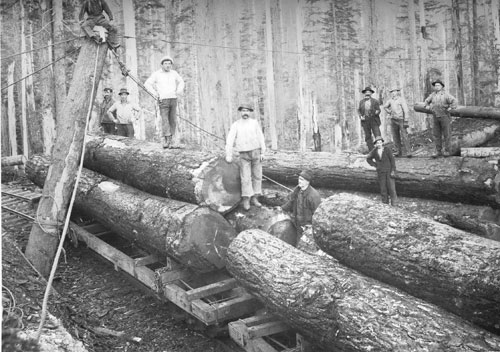 Early 20th Century Oregon Logging Photos