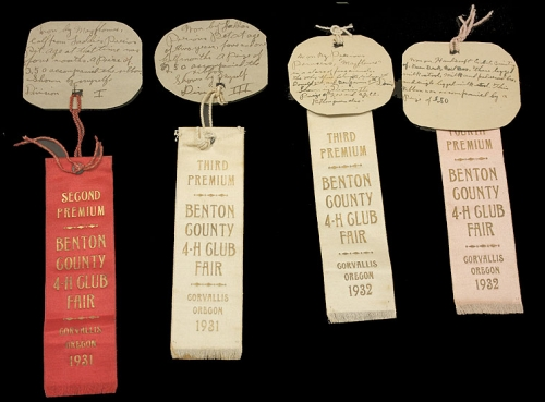 Benton County Fair Award Ribbons