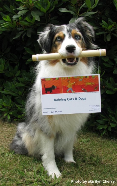 Dog Holding Sign