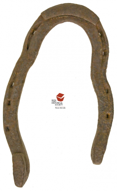 Metal Orthopaedic Horseshoe